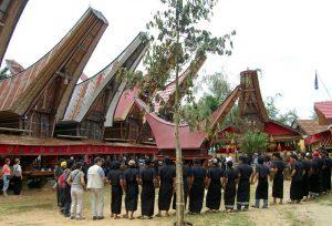 Jour 4: Decouverte Tana Toraja