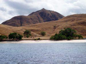 Jour 6: Rinca – Komodo - Labuanbajo